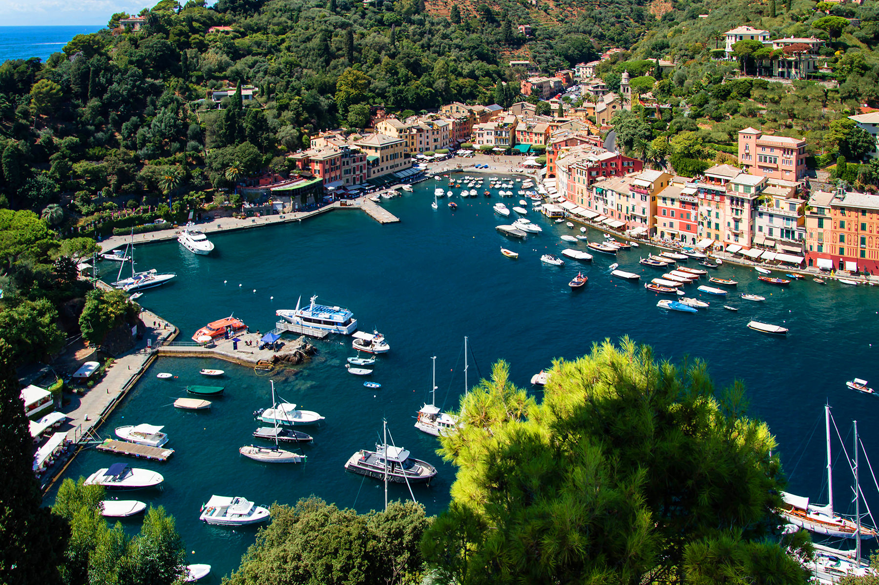 Portofino Harbour 1